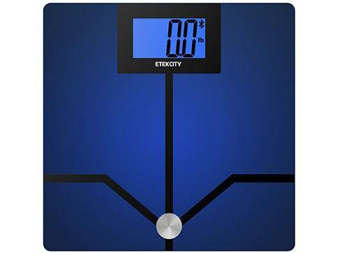 etekcity body fat scale as seen from the top