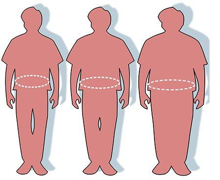 Drawing of three different body fat types