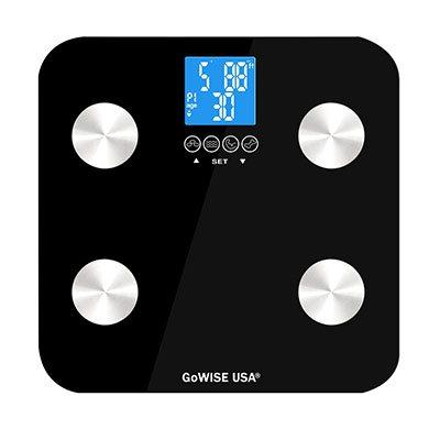 Gowise USA Body fat analyzer top view